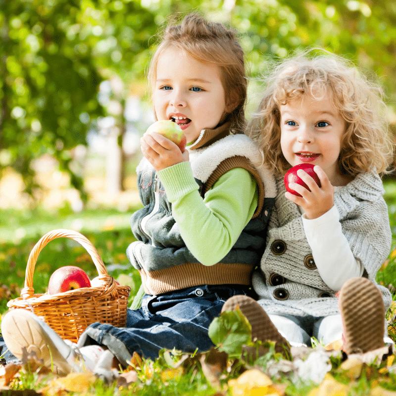 healthy kids homepage beeld